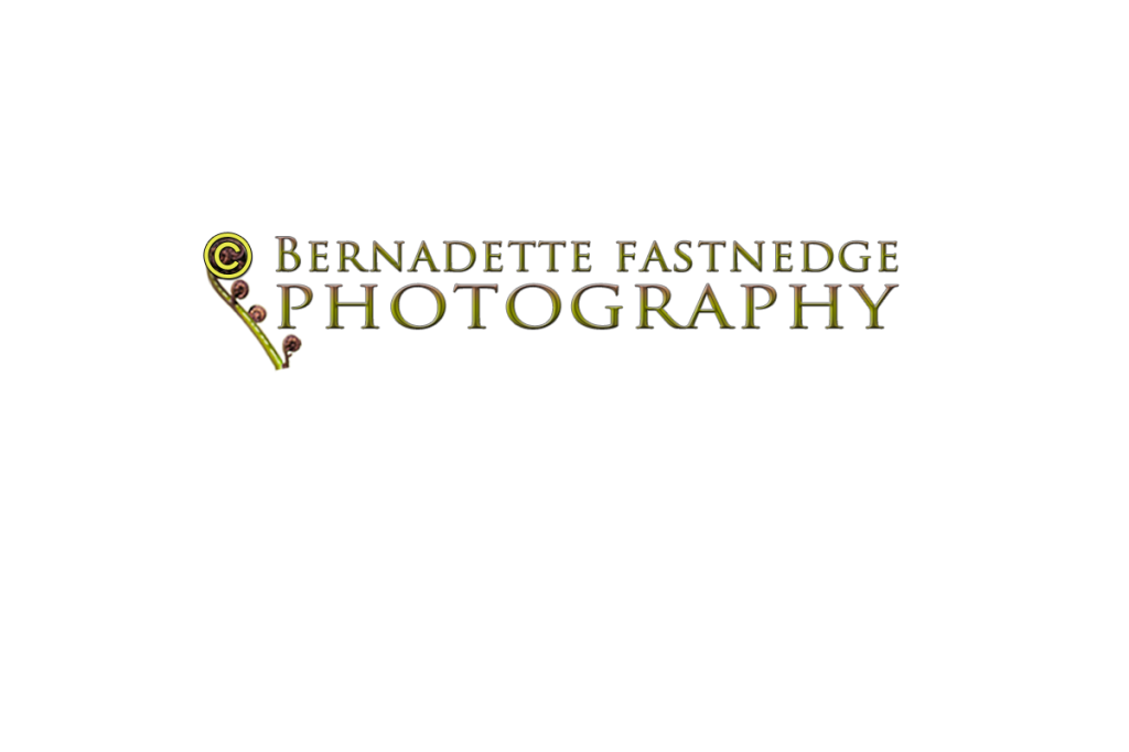 Bernadette Fastnedge Photography